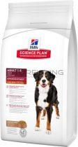 Hill's Science Plan Canine Adult Large Breed - bárány, rizs