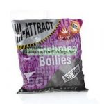 DYNAMITE BAITS HI-ATTRACT SQUID AND OCTOPUS BOJLI 1KG 15MM 2 méretben